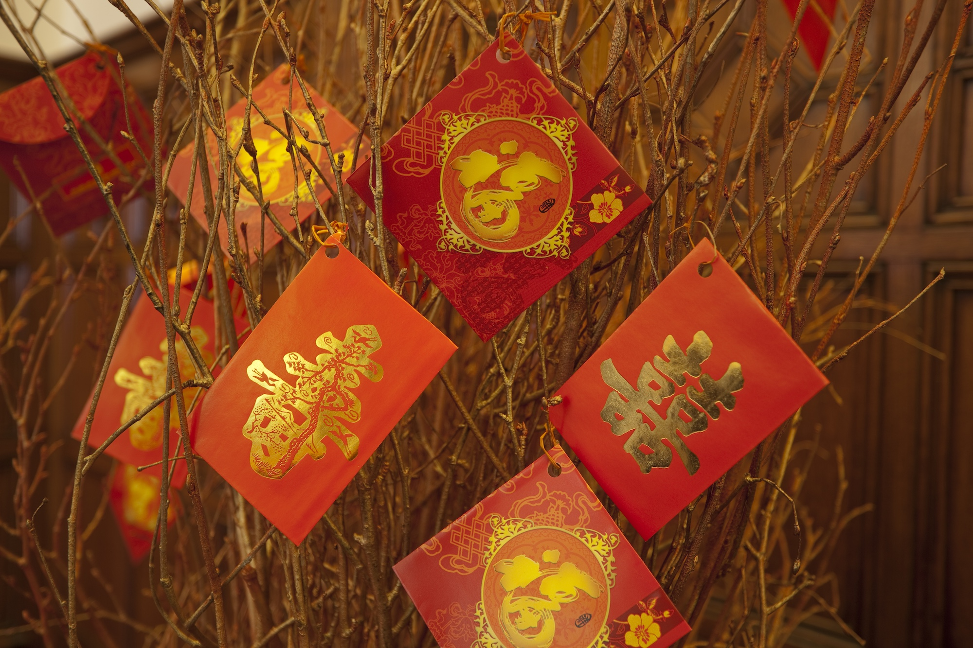 Ushvani CNY Envelopes